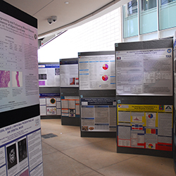 AED Poster Presentations