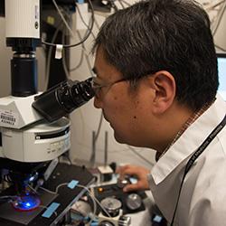 Shenfeng Qiu, PhD
