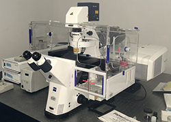 Zeiss LSM 710 Confocal