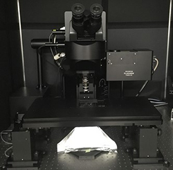 Olympus Multiphoton FV MPE RS Apollo System