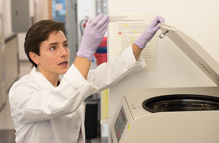 Amelia Gallitano, MD, PhD, at Work in Her Lab