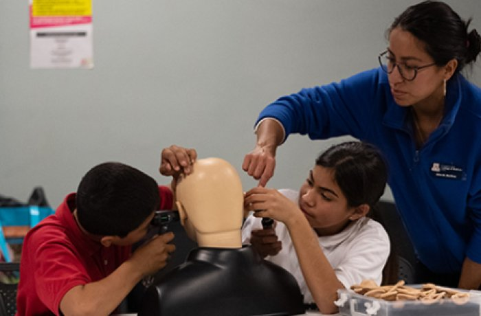 Students Examine the Ears of the College's Simulation Mannequin