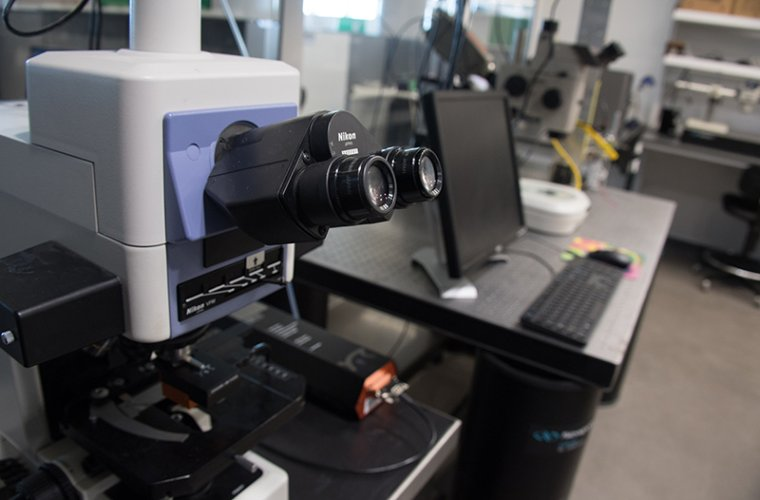 A Microscope in the ANBM Laboratory Space